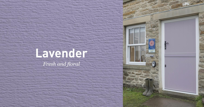 Solidor Lavender